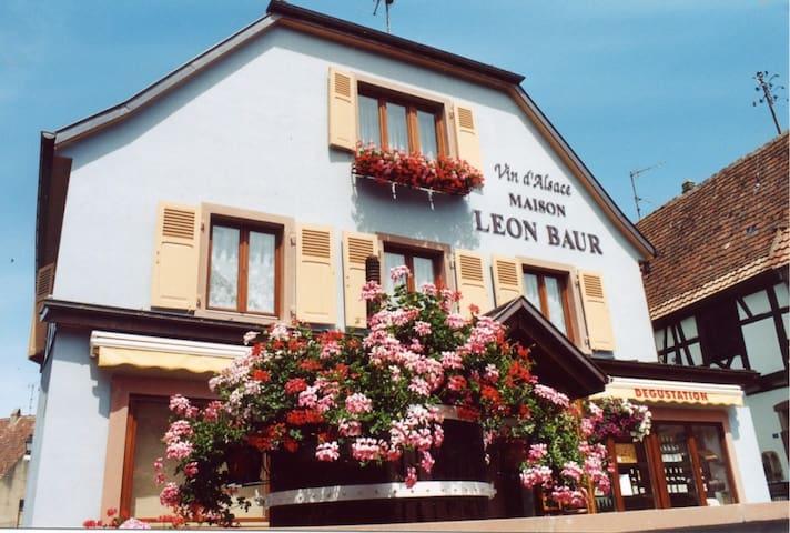 """Le Victoria"" à Eguisheim, 6 pers, rénové en 2017 - Eguisheim - อพาร์ทเมนท์"