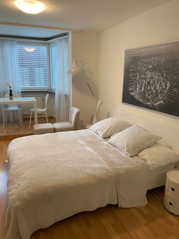 Apartment in central Basel 5 min walk from station