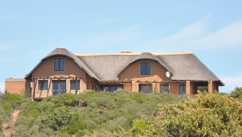 Ocean View Cottage, Springerbay, SA - Mossel Bay - Hus