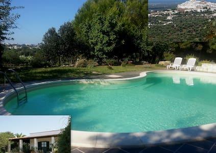 villetta con piscina in campagna - オストゥーニ