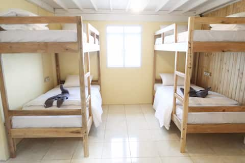 Bed with Breakfast in 4 Bed Male Dorm Room @ Bira