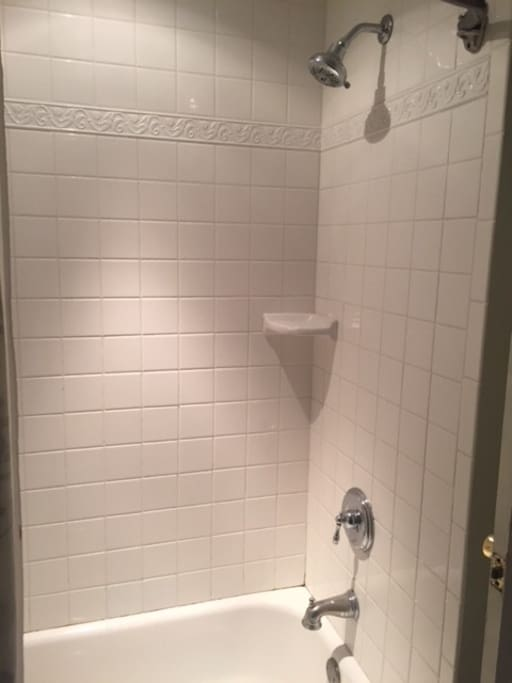 Shower and bathtub combo