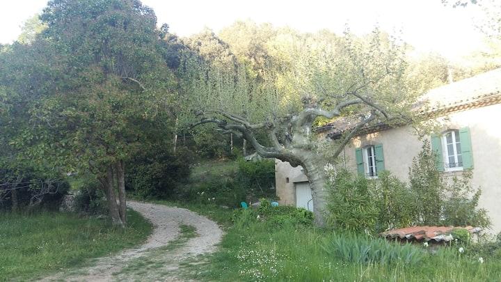 Studio 2 prs dans bastide provençale à la campagne