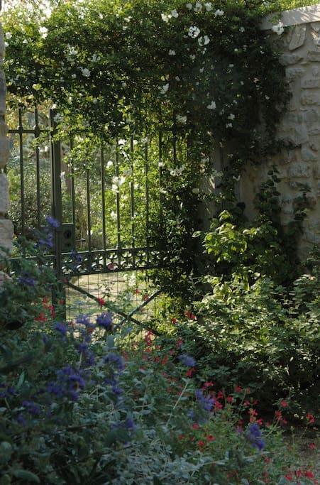 entre les deux jardins