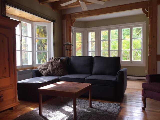 Salon et verrière.  Incluant un nouveau sofa-lit
