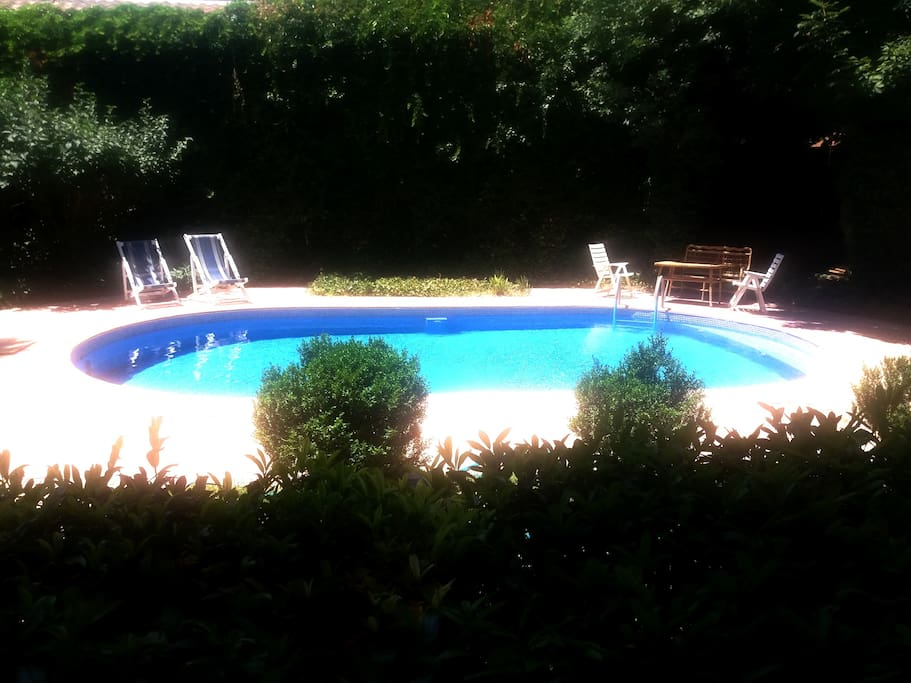 garden and swimming pool (view from terrace)