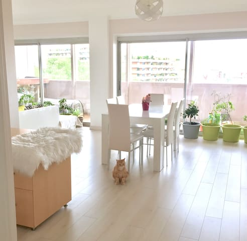 Chambre Lumineuse / Bright Cozy Room