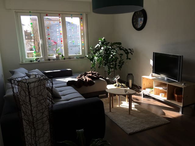Room in Sunny and comfy flat in the center of Ulm