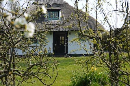 Cornfield cottage, Colne Engaine