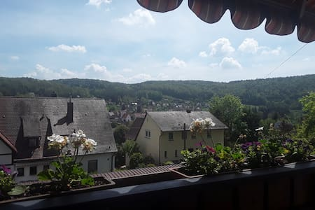 View over the Pegnitz river valey