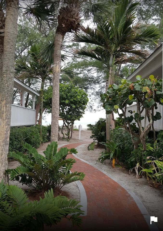 Walk out the front door and you are steps from the beach and the gulf of Mexico