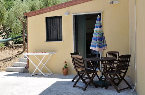 cozy flat in cilento close to sea and olive trees