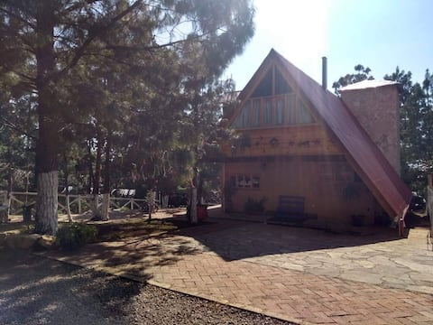 Spectacular cabin inside Nature!