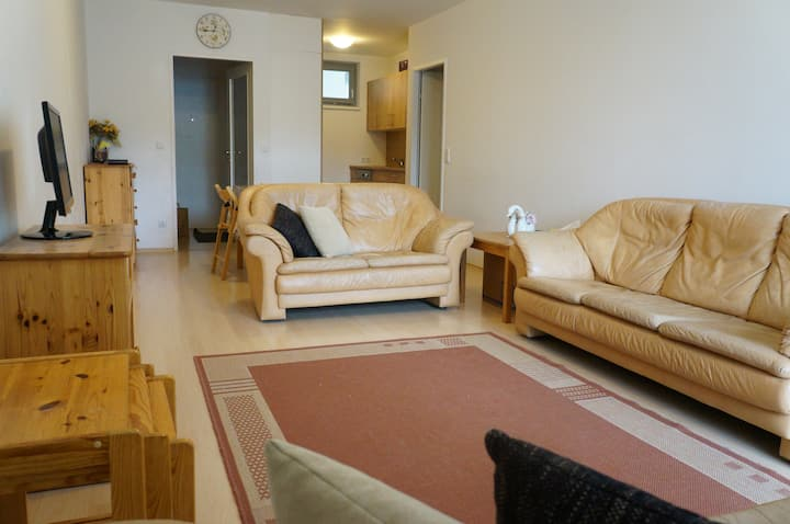 Clean, comfortable and centrally located apartment