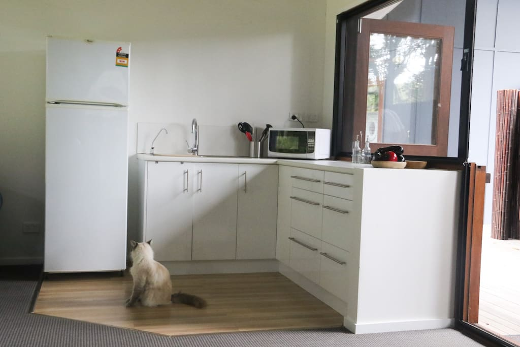 Kitchen  (kitten not included)