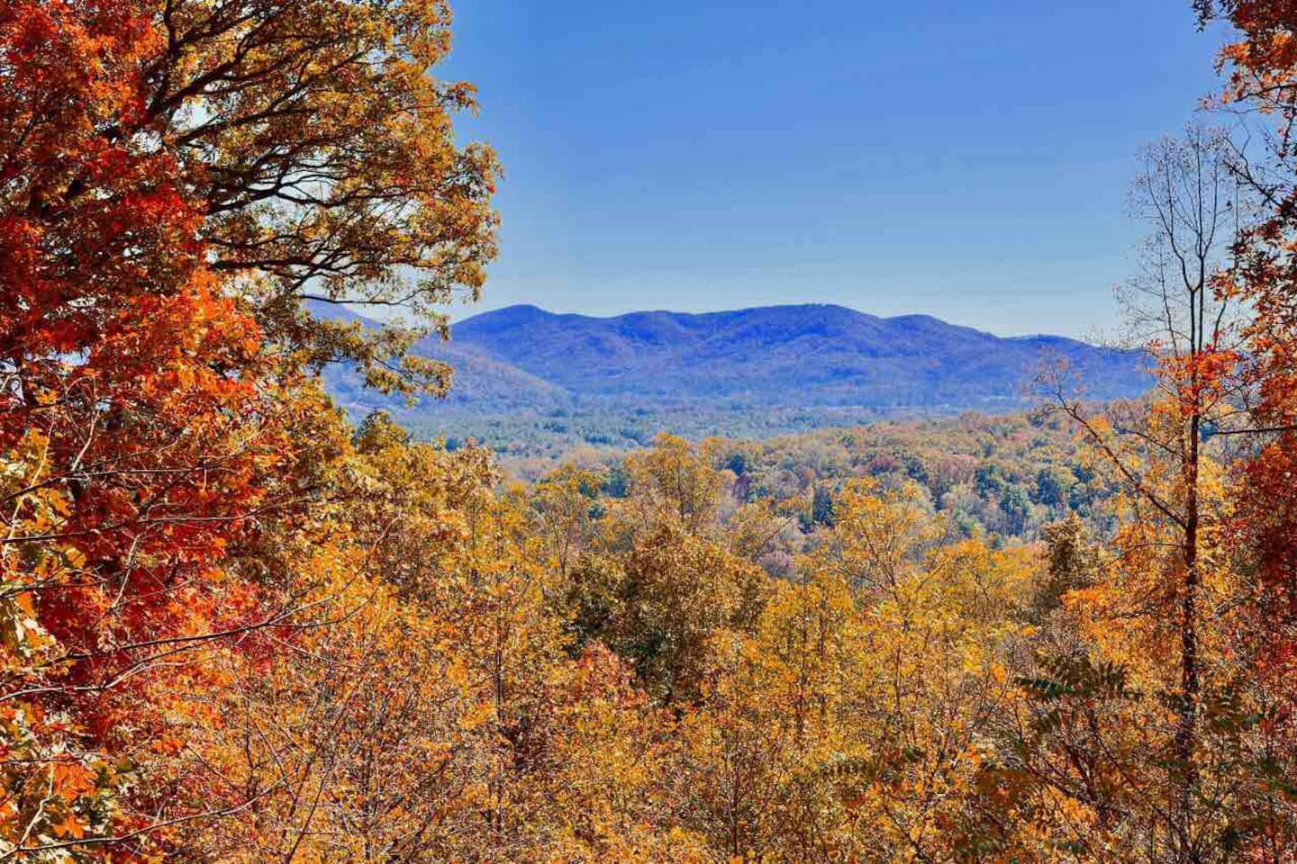 Breathtaking blue ridge mountain views that you can see from almost every room in the home!