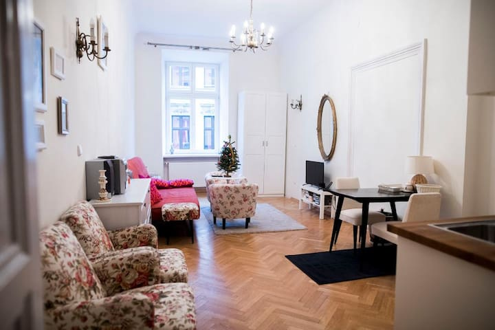 Old town apartment Kraków