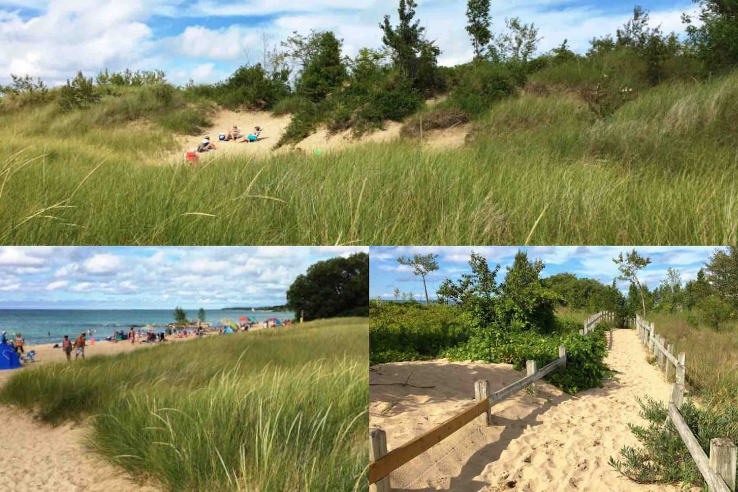 One of the few intact natural dune systems in Ontario, they protect the shoreline from  storm waves and provide a perfect environment for numerous types of flora and fauna which flourish in a hot, dry climate.   Images curtesy of Southampton tourism.