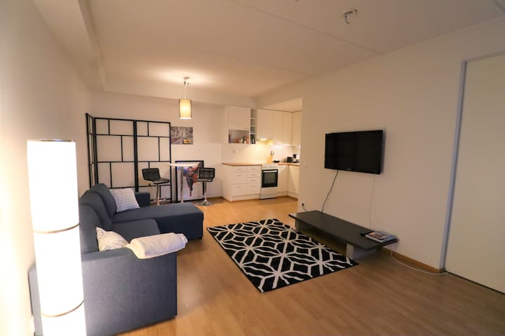 Modern Helsinki Apartment with a Balcony, Sleeps 6