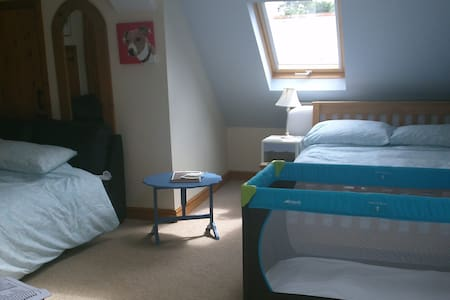 Family Room sleeps 4 + single bed. - high bickington
