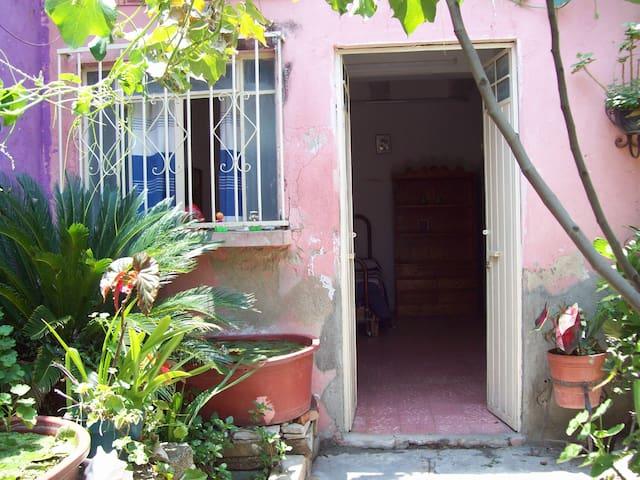 Garden outside of the bedroom.