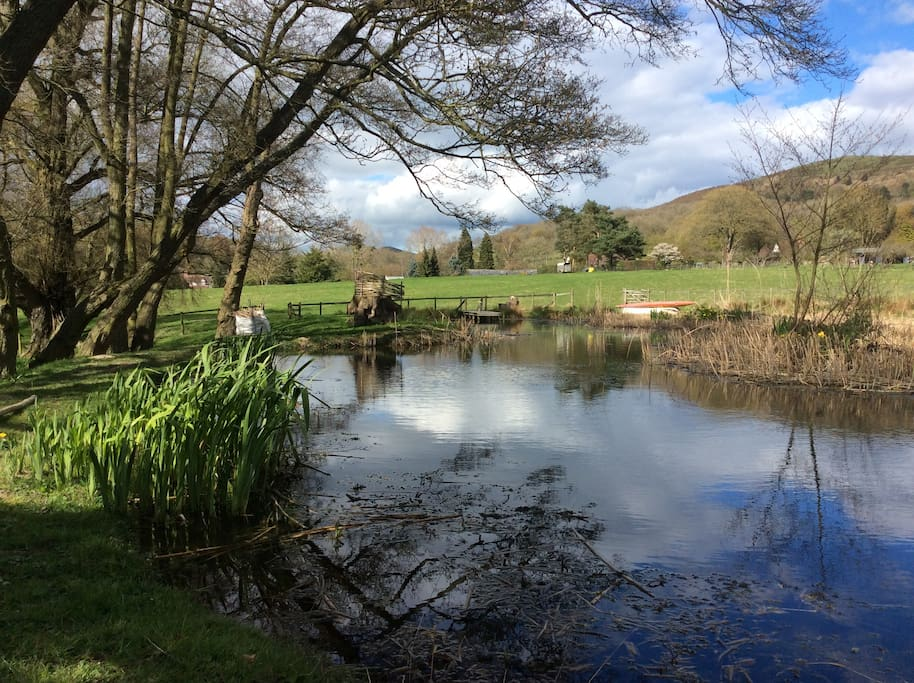 Water and wildlife meadow, dragonflies and kingfishers can be seen in the summer months..!! Surrounded by the outstanding natural beauty of The Malvern Hills