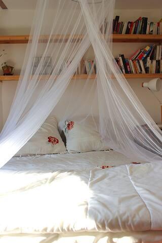 Chambre lumineuse avec moustiquaire