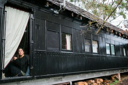 Steam: Train Carriage in the Otways - Forrest