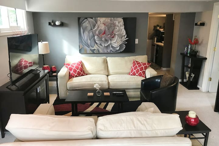 Spacious suite in Arlington, minutes from DC/DCA