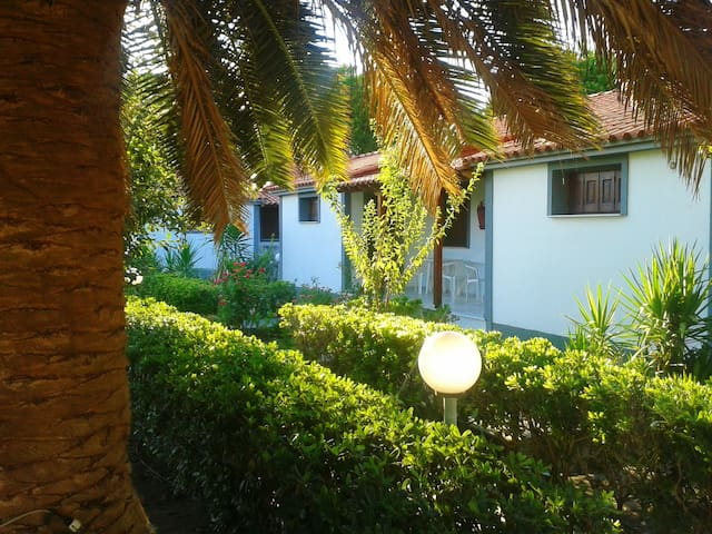 Vicky Studios and Apartments , Skala kallonis
