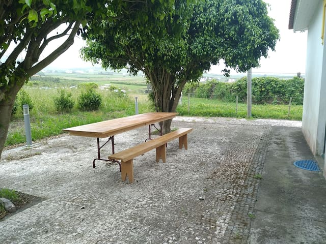 Faial, great areas and terrace, free wifi AL/1980