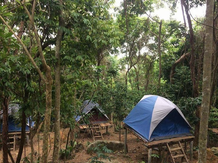 RainForest Camping Perhentian Kecil Tent 4