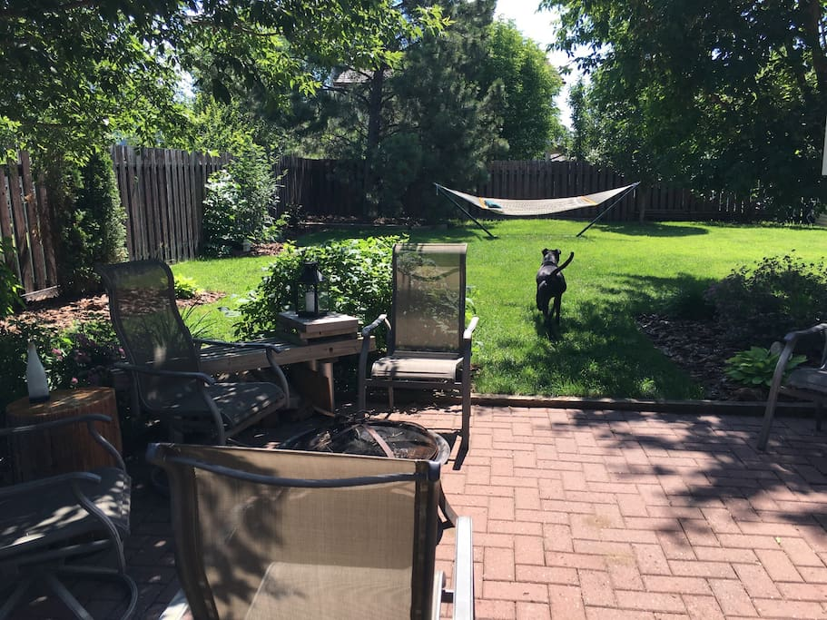 View of side yard from patio. The backyard is huge and we have bean bag games, frisbee, hammock, and outdoor bbq / dining area available for our guests.