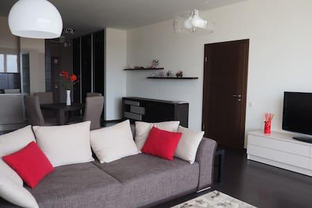 Elegant central apartment - Riga - Apartment-Hotel