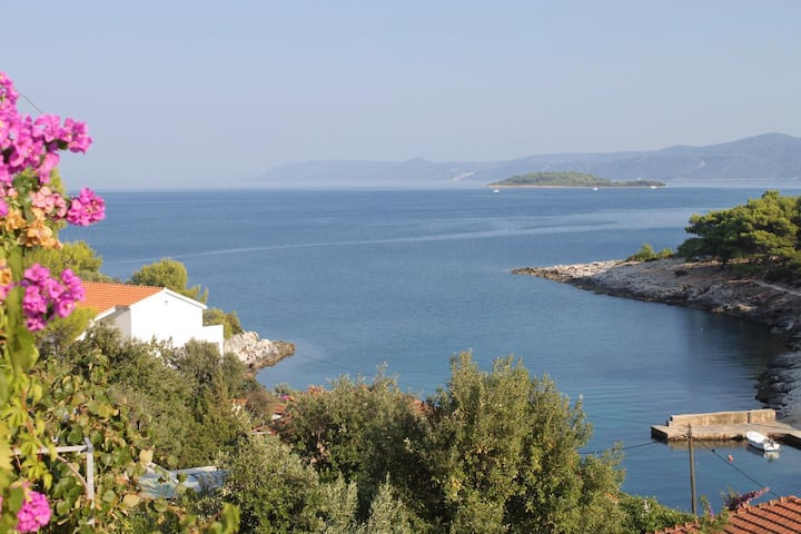 One bedroom apartment with terrace and sea view Mudri Dolac, Hvar (A-4050-c)