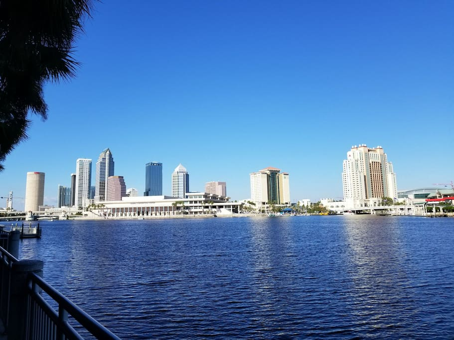 view of downtown from Davis islands.  looking at downtown Tampa, The convention center, sail pavilion, water taxi stops.