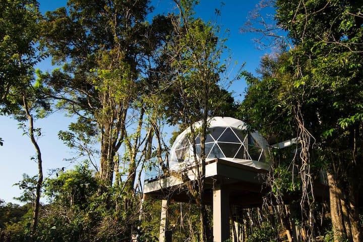Chira, Monteverde Glamping, Pacific Tent. CR - Monteverde - Tent