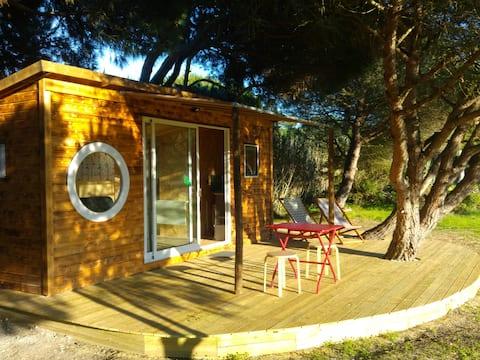 The Secret Tree Cabin