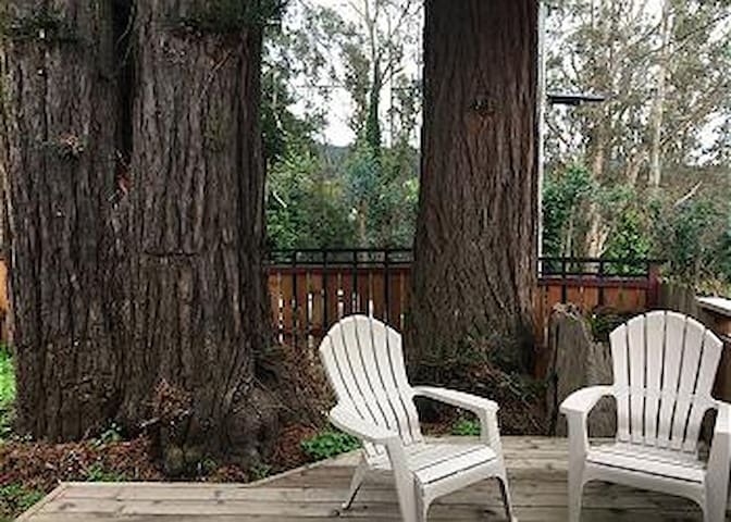 3 Trees Hollow - Charming Redwood cottage for two - Arcata - Cabana