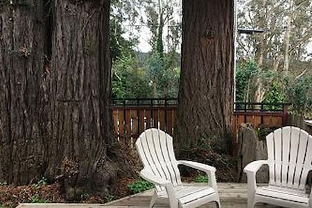 3 Trees Hollow - Charming Redwood cottage for two - Arcata - Bungaló