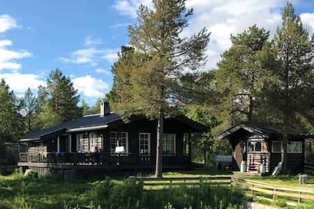 Koselig hytte i naturskjønne omgivelser; Sør-Senja