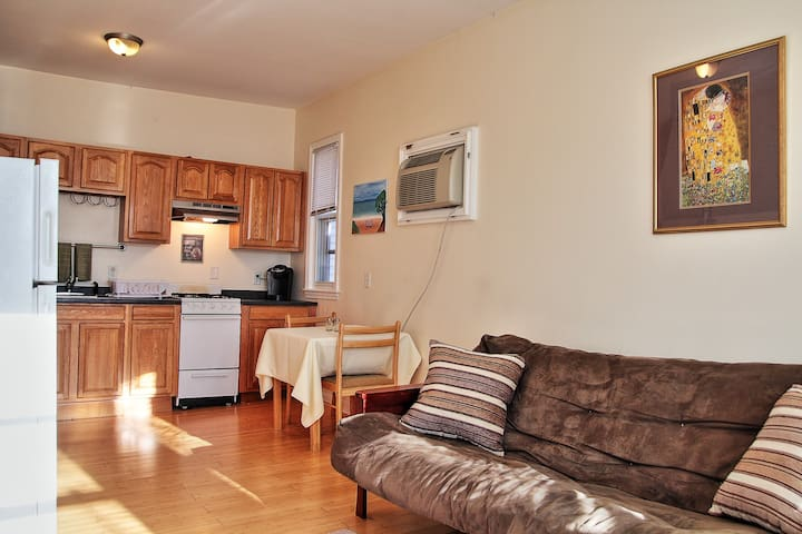 #3 Classic 3BD Near Airport and 'T' to Downtown - Boston