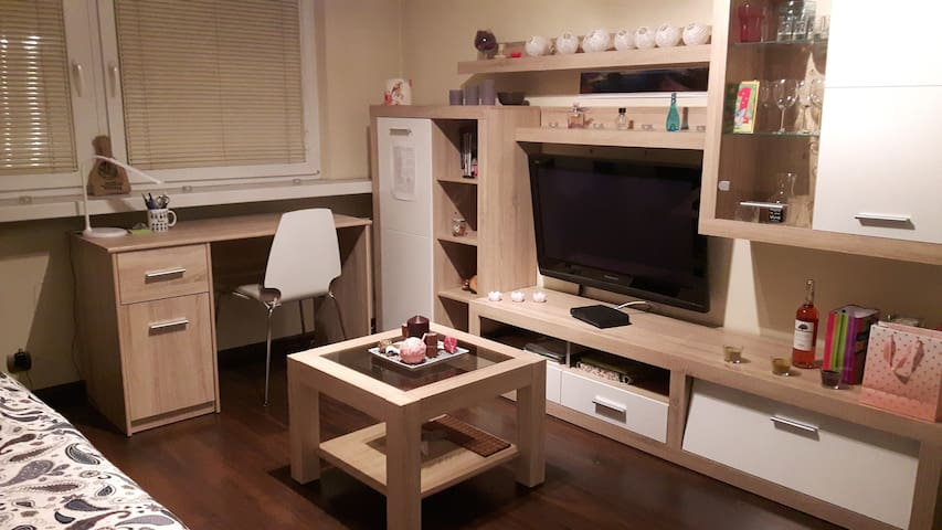 Cosy room near the city centre and Tauron Arena - Krakova - Huoneisto