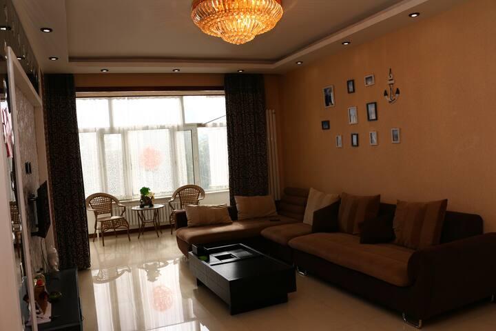 现代豪华风两居室