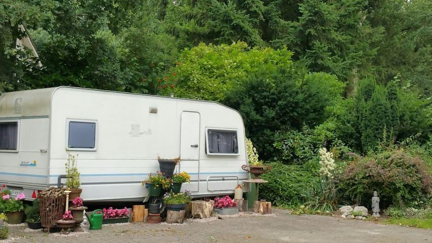 Caravan ad bosrand - Loenen