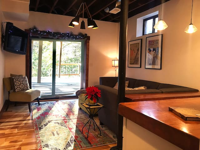 Newly remodeled apartment minutes to city