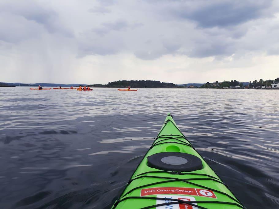 Sporty? Rent a kajakk and cruise around the OsloFjord