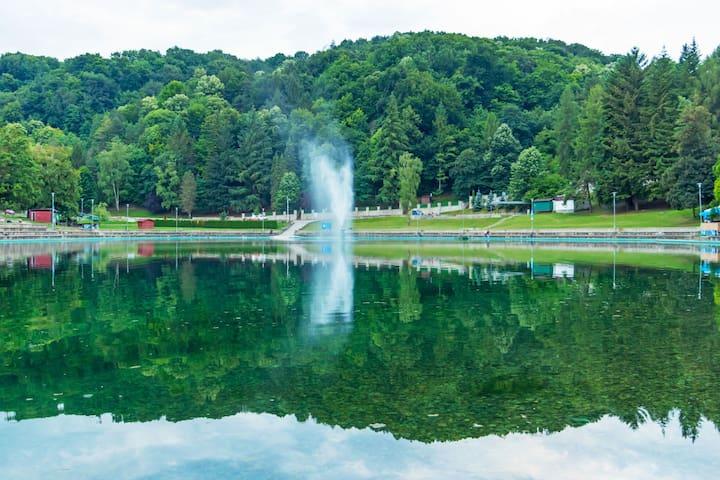 Séduisante maison de vacances à Orahovica près du lac