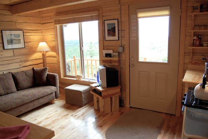 Cozy cabin living. The couch fold into a bed for additional guests.