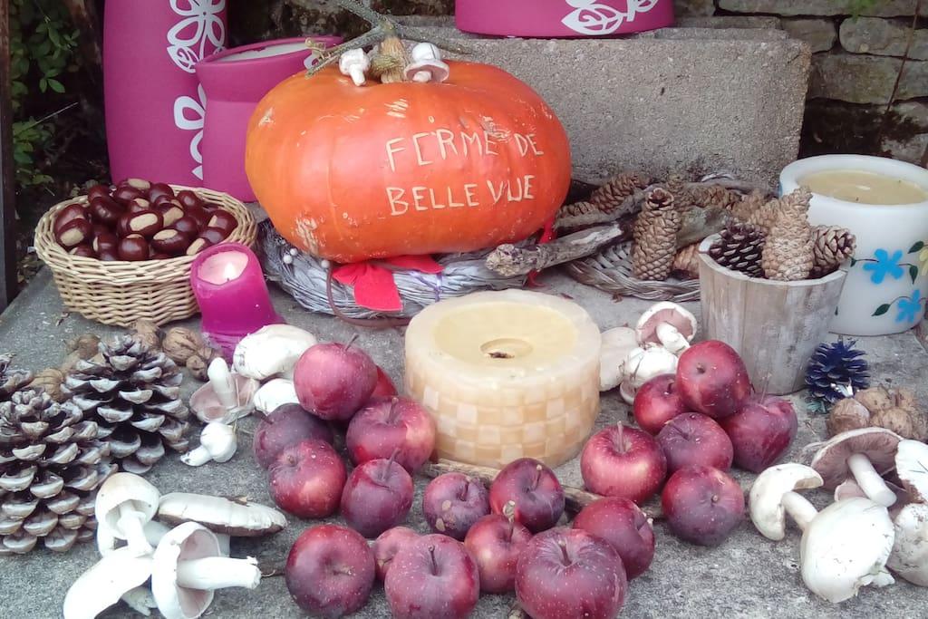 La Ferme de Bellevue se met aux couleurs de l'automne.